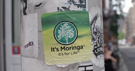 Its Moringa Sticker
