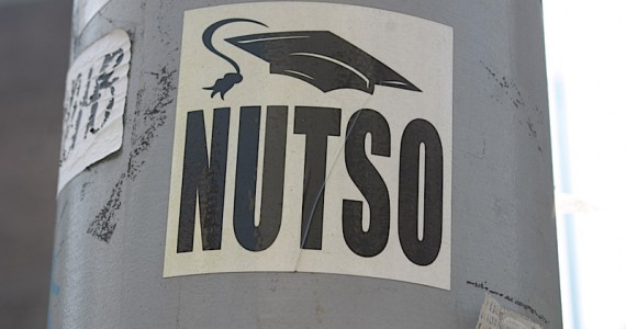 Nutso 2 Sticker