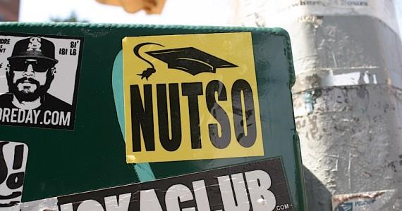 Nutso Sticker