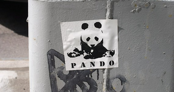 Pando Sticker