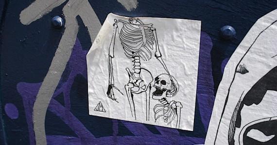 Skeleton Head Sticker